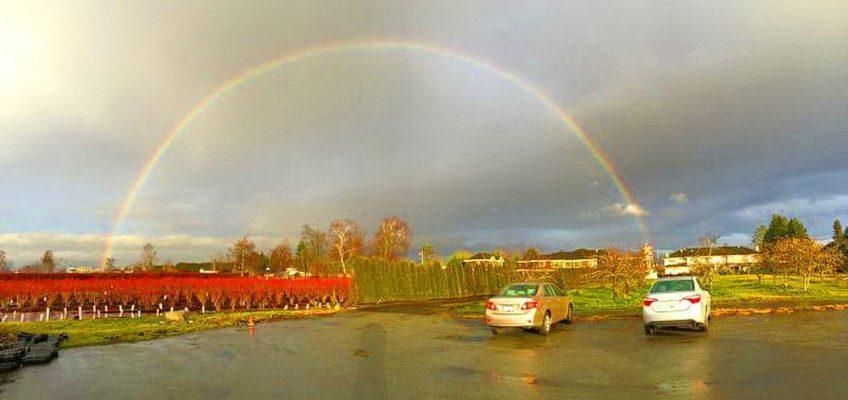 浩然精舍新春釋佛法會 悟無常立目標 為眾祈福天現彩虹